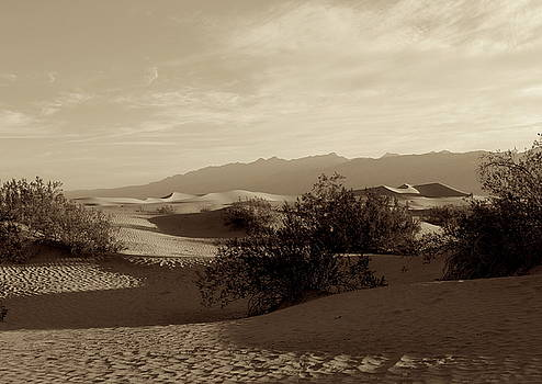 Death Valley Dunes in Sepia by Erica Keener