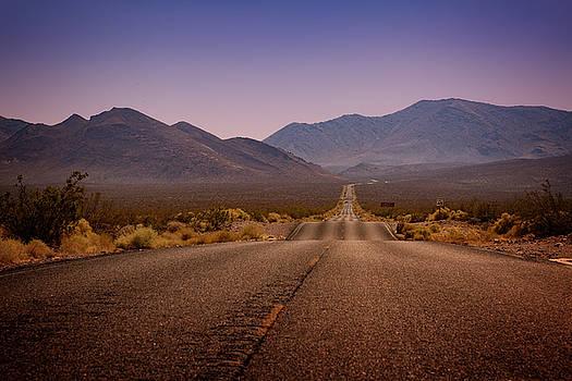 Ricky Barnard - Death Valley Highway