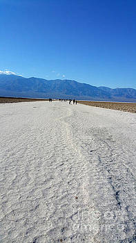 Gregory Dyer - Death Valley Salt Flats