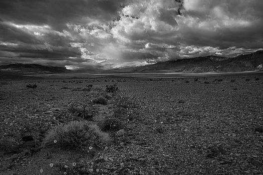 Rick Strobaugh - Death Valley torm BW