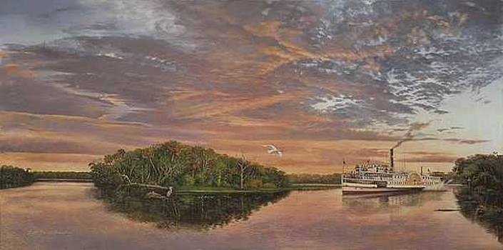 DeBary on the St. Johns River by Keith Martin Johns