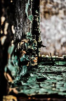 Decay close-up by Terepka Dariusz