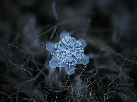 December 18 2015 - snowflake 2 by Alexey Kljatov