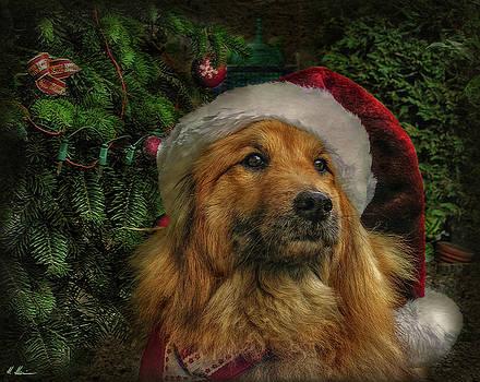 December Calendar Sheet by Hanny Heim