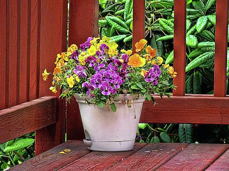 Deck Bouquet by Wendy McKennon
