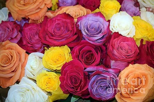 Decorative WallArt Brilliant Roses Photo A41217 by Mas Art Studio