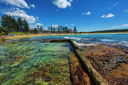 Dee Why Rock Pool by Smoked Cactus