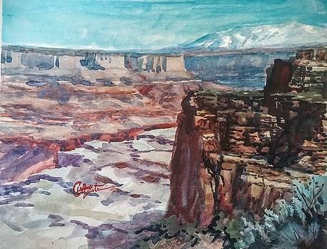 Deead Horse Overlook by Larry Christensen