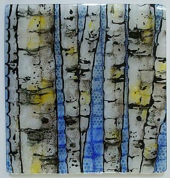 Deep Birch by Michelle Rial