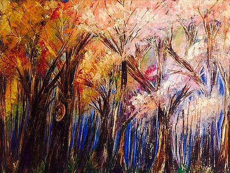 Deep Dark Woods by Jodi Eaton