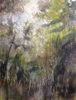 Deep Deep Woods by Barbara Hranilovich