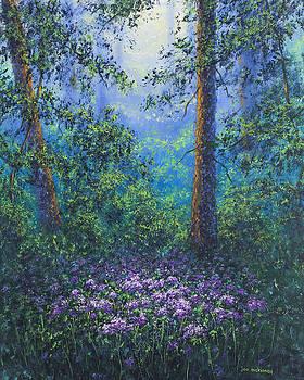 Deep Forest by Joe Mckinney