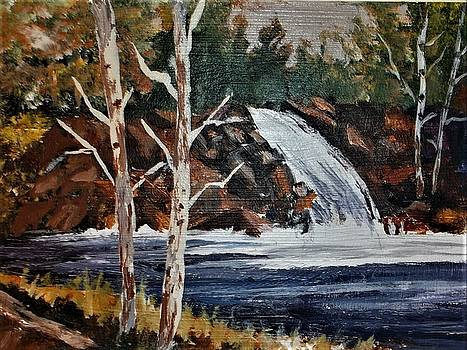 Deep Forest Waterfall by Al Brown