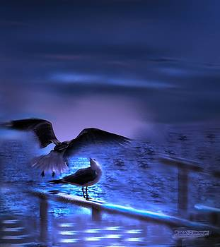 Deep Into The Stormy Night by Deborah