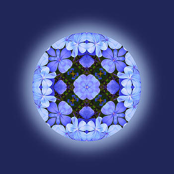 Deep Nature Mandala by Jorge Gomez