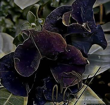 Rizwana A Mundewadi - Deep Purple Two