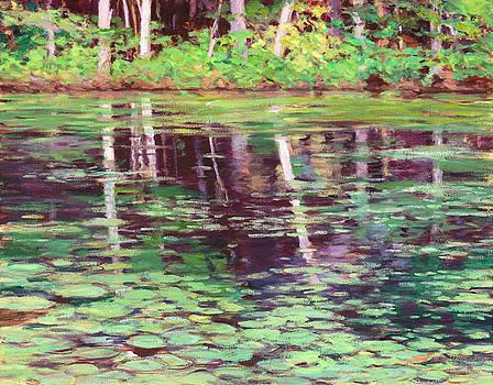 Deep Reflections by Lynne Adams