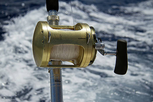 Deep Sea Fishing by Debby Richards