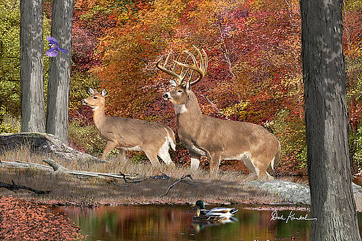 Deer Art - Deer Creek Whitetails by Dale Kunkel Art