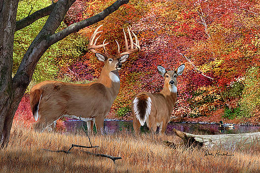 Deer Art Print - Megatron by Dale Kunkel Art
