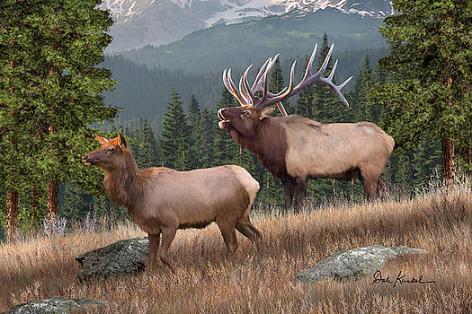 Deer Art - The Mighty Elk by Dale Kunkel Art