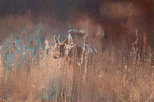 Deer at Garden of the Gods best by Sabrina Farmer