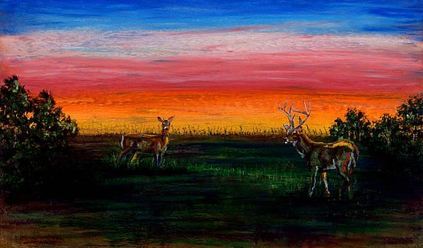 Deer Dawn by Laurie Tietjen