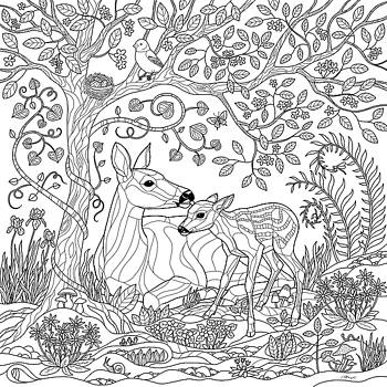 Crista Forest - Deer Fantasy Forest Coloring Page