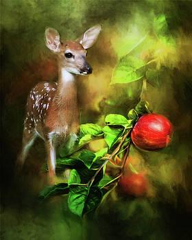 Deer In The Apple Orchard by TnBackroadsPhotos