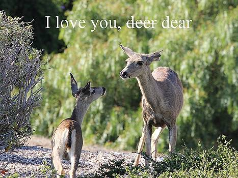 Gary Canant - Deer Love Greeting Card