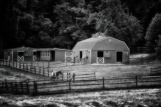 Deerfield Farm by Mark Fuller