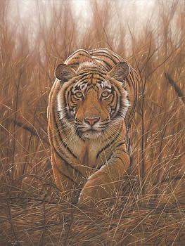 Deerstalker by Eric Wilson