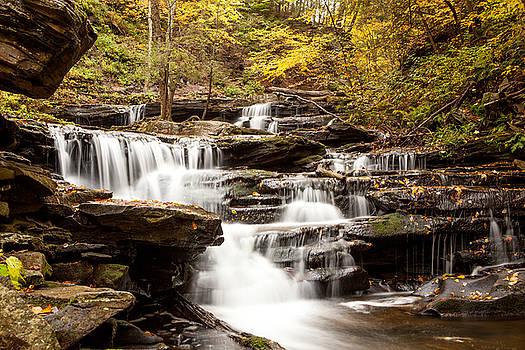 Delaware Falls by John Daly