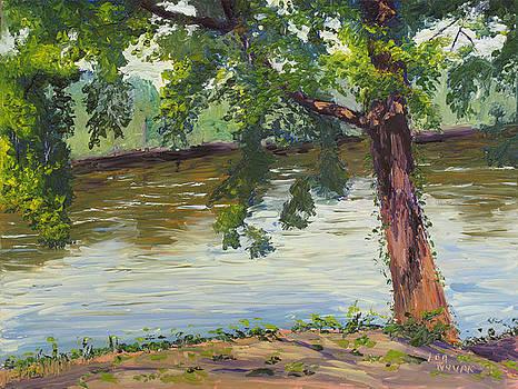 Lea Novak - Delaware River at Washington