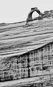 Tim Richards - Delicate Arch Afar BW