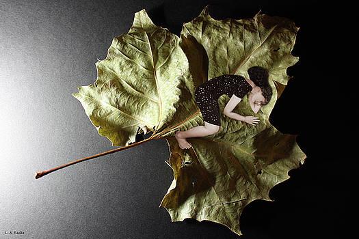 Delicate Balance by Lauren Radke