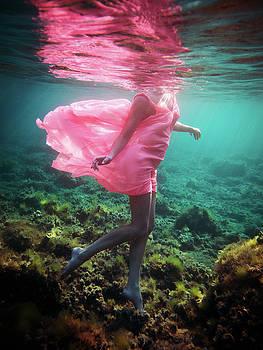 Delicate Mermaid by Gemma Silvestre