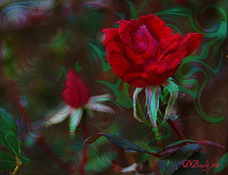 DONNA BENTLEY - Delicious Rose
