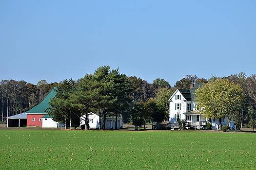 Delmarva Farm by Kim Bemis