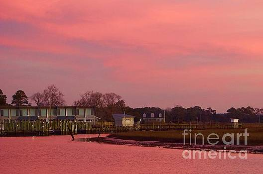 Delmarva Sunrise by Alice Mainville