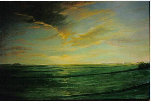 John L Campbell - Delta Rice