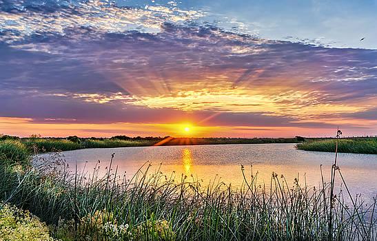 Delta Sunrise by Phil Clark