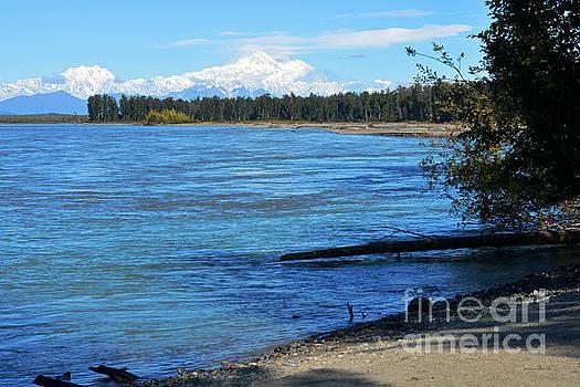 Connie Fox - Denali at Talkeetna. Alaska Landscapes