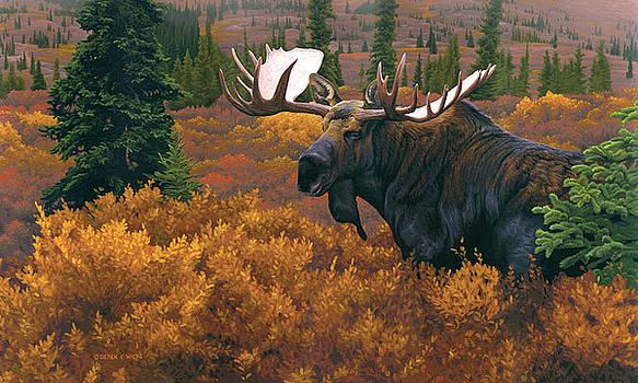 Denali Autumn by Derek Wicks