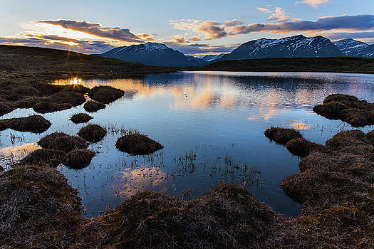 Denali Highway Sunset by Ron Day