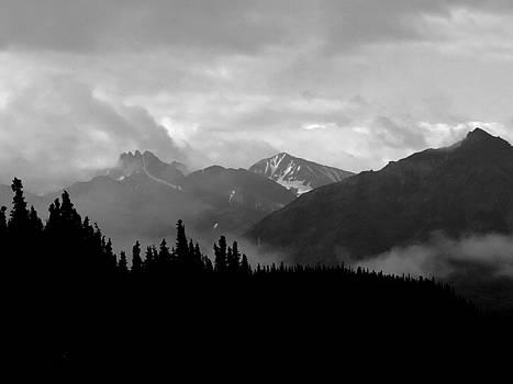 Denali National Park 1  by Dick Goodman