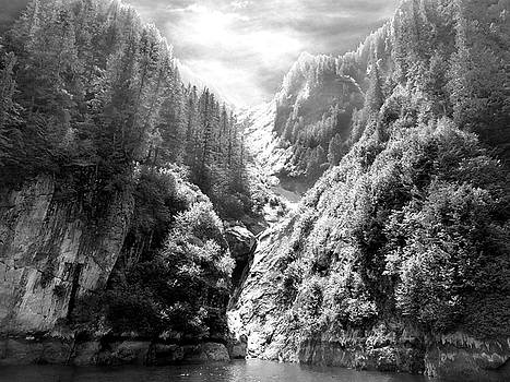 Denali National Park 2 by Dick Goodman
