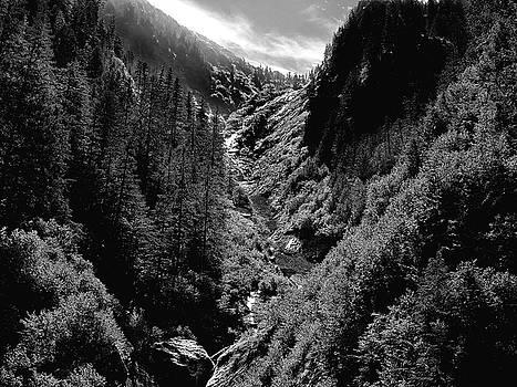 Denali National Park 3 by Dick Goodman