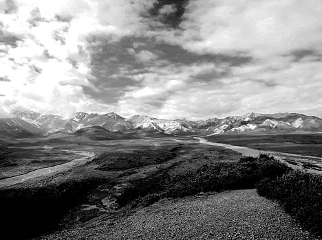 Denali National Park 4 by Dick Goodman