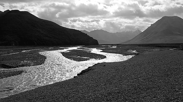 Denali National Park 5 by Dick Goodman